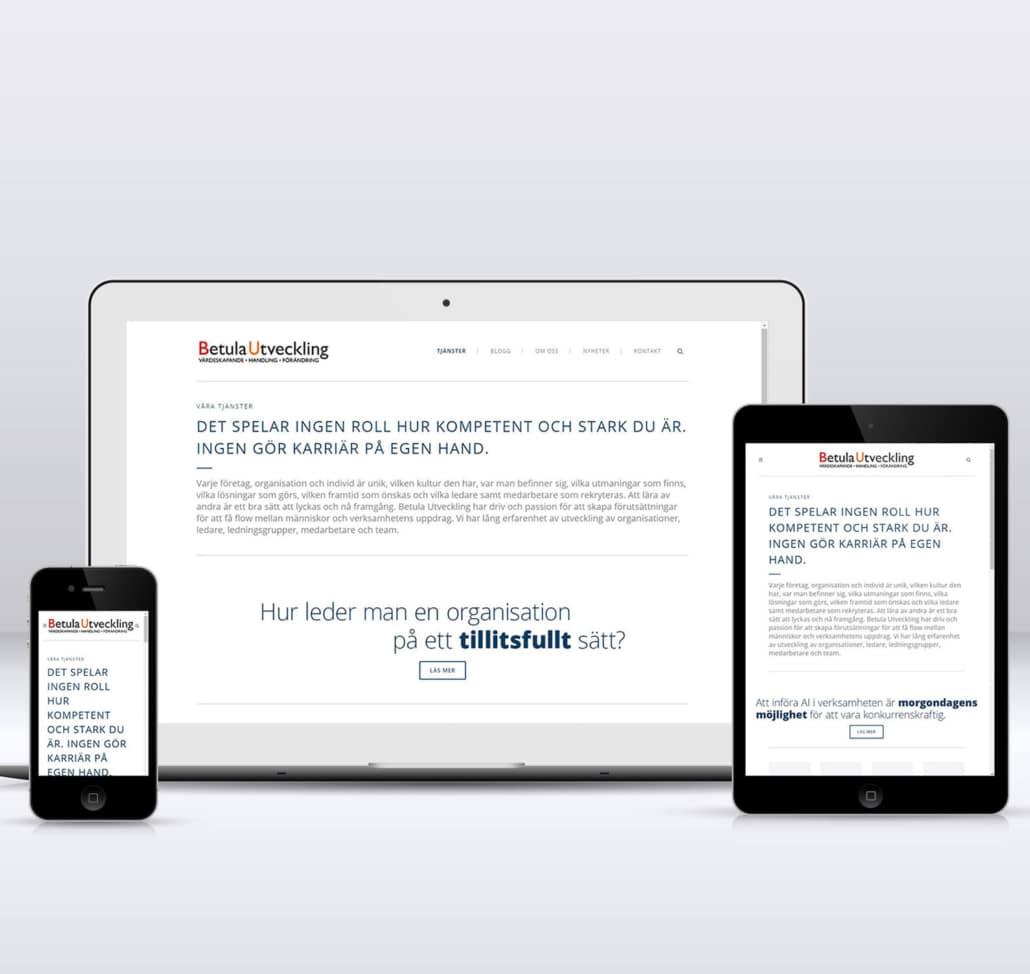 betula utveckling ny webb responsive